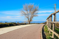 Deserted gravel hiking path with snowy mountains peaks in background Royalty Free Stock Photo