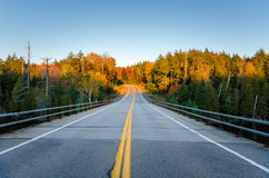 Deserted Highway through a Forest under Blue Sky in Autumn Royalty Free Stock Photography