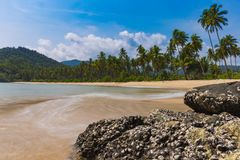 Free Deserted Island Beach With Palm Trees And Blurred Waves. Royalty Free Stock Photo - 130145025