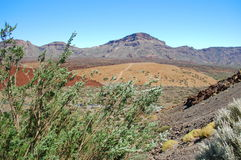 Deserted landscape of teide national park on tener Royalty Free Stock Photos