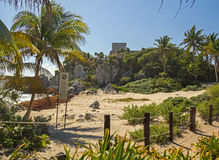 Deserted mayan beach in Tulum archaeological zone, Mexico. Beautiful natural beach with plants and castle on the background Royalty Free Stock Photo