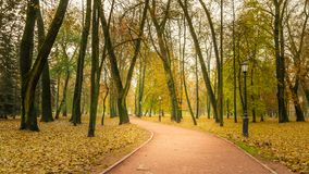 A deserted morning in the autumn city public park. Morning in the autumn city public park. deserted footpath stock image
