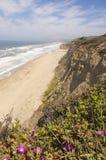 Deserted Northern California Coastline Royalty Free Stock Photo