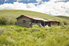 Deserted old homestead in summer in Centennial Valley near Lakeview, MT Stock Images