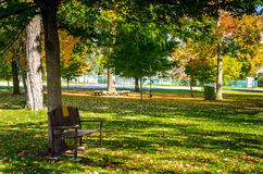 Deserted Public Park in Autumn with the Lawn Covered in Fallen Leaves. Empty Wooden Bench a Under a Tree in a Deserted Public Park on a Sunny Autumn Day Stock Image