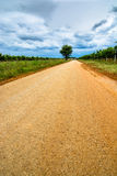 Deserted Road with Tree and Cloudy Sky Stock Photography
