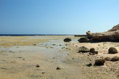 Deserted rocky beach Stock Images