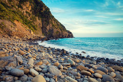 Deserted rocky pebble beach Royalty Free Stock Images