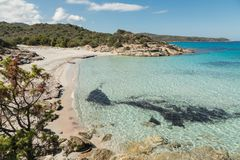 Deserted sandy beach and translucent sea in Corsica Royalty Free Stock Photography