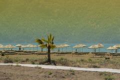 Deserted sandy beach Stock Photos
