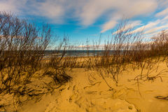 Deserted sandy sea shore Stock Photo