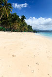 Deserted, sandy tropical beach Royalty Free Stock Images