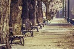 Deserted sidewalk in winter Stock Photo