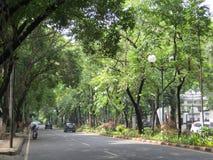 Deserted street in Menteng, Jakarta. Indonesia Royalty Free Stock Photos