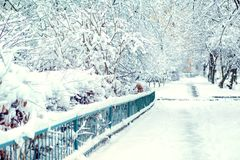 Winter street in the snow. place for text Royalty Free Stock Image