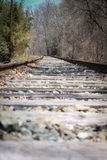 Deserted train tracks. In fall Stock Photography