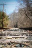 Deserted train tracks. In fall Royalty Free Stock Photo