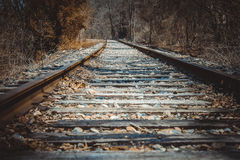 Deserted train tracks. In fall Royalty Free Stock Photos