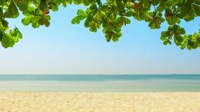 Deserted tropical beach. Sihanoukville, Cambodia. High definition video - Deserted tropical beach. Sihanoukville, Cambodia stock video