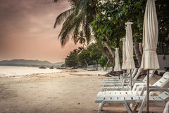 Deserted tropical beach with sunbeds and umbrellas among palm trees without people during beautiful orange sunset in hidden paradi. Tropical beach with sunbeds Royalty Free Stock Photos