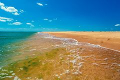 Deserted tropical beach on a sunny day. Tropic sea shore. Deserted beach. Marine landscape with ocean and blue sky stock image