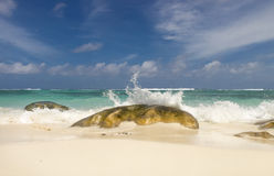 Deserted tropical beach Royalty Free Stock Photo