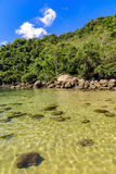 Deserted and unspoilt beach with its limpid, green and transparent waters. That meet the rainforest Royalty Free Stock Photography