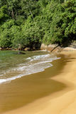 Deserted and unspoilt beach. With its limpid and transparent waters that meet the rainforest Stock Images