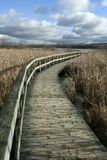 Deserted wooden path Stock Images