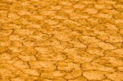 Deserted yellow dryland Royalty Free Stock Images