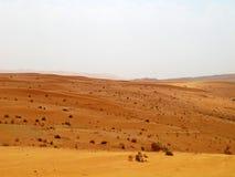 desertera den röda sanden Arkivfoton