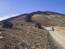 Desertera det vulkaniska landskapet med ensam fotvandrareklättring på vulkan pico del teide med Huevos del Teide accretionary Ägg royaltyfri foto