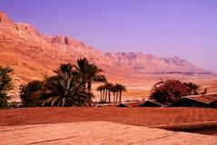 Desertera i Israel på området av det döda havet Royaltyfri Fotografi