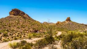 Desertera landskap- och kraftfullberg i den Tonto nationalskogen i Arizona, USA Arkivfoto