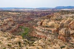 Desertera landskapet längs kalvliten vikkanjonen, huvudväg 12, Utah Fotografering för Bildbyråer
