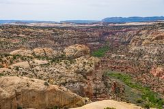 Desertera landskapet längs kalvliten vikkanjonen, huvudväg 12, Utah Royaltyfri Bild
