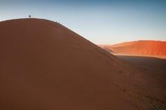 desertera namib Arkivfoto