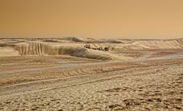 desertera sahara Arkivfoton