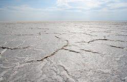 desertera salt Royaltyfria Bilder