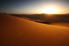 desertera soluppgången Arkivfoto