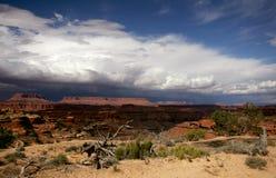 desertera stormen Arkivfoto