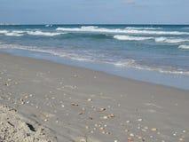 Deserterad sandig strand i Tunisien, sand och skal arkivbilder