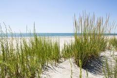 deserterad strand Royaltyfri Foto