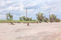 deserterad strand Fotografering för Bildbyråer
