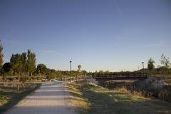 Desertic Park Stock Images