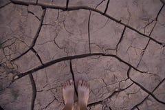 Desertificação Imagem de Stock Royalty Free