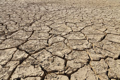 desertificación Fotos de archivo libres de regalías