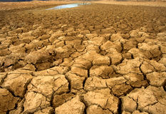 Desertification stock photography