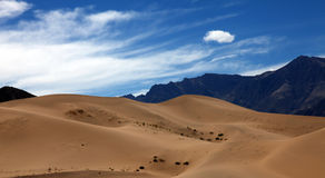 Desertification Royalty Free Stock Photos