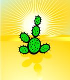 Desertification and cactus Stock Images